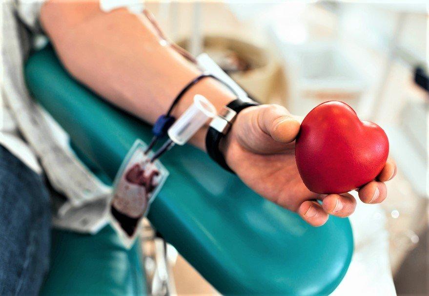 Donazione di sangue (foto di repertorio)