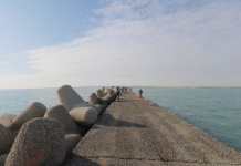 Il molo lungo di Marina di Ravenna (foto da google maps)