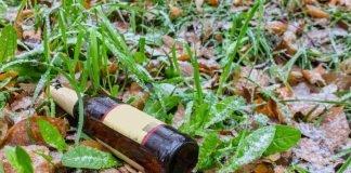 Bottiglia di birra vuota gettata a terra in un parco (foto di repertorio Shutterstock.com)