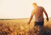 Contadino (foto di repertorio Shutterstock.com)