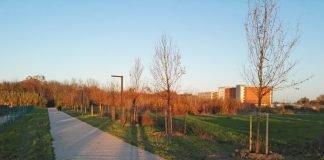 Parco Baronio (foto di repertorio)