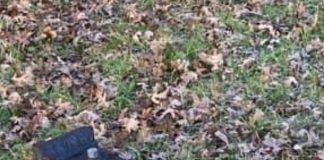 Fontanella rotta nel parco sotto via Fiume Abbandonato