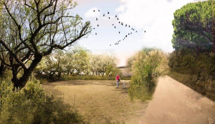 Progetto Parco Marittimo - Marina Romea. (foto di repertorio)